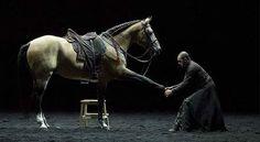 Bartabas : un homme, des chevaux, de l''art