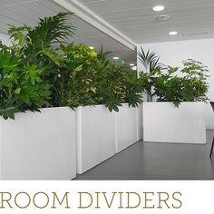 Large Indoor Plant Pots Melbourne | Indoor Planters Melbourne ...