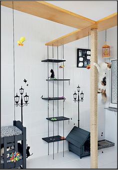 cat play area-- totally gonna be those people Animal Room, Cat Towers, Cat Shelves, Cat Playground, Cat Room, Cat Condo, Cat Cafe, Pet Furniture, Space Cat