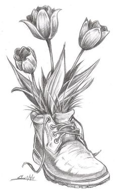 spring-time flowers, tulips, boot, sketch, pic, drawing