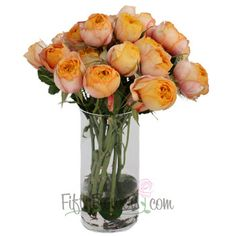 FiftyFlowers.com - Sunglow Cup Mini Cabbage Roses