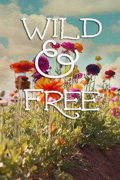 wild & free. #junkgypsy4pbteen