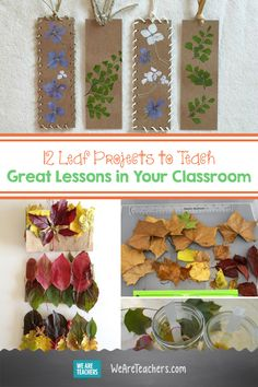 12 Leaf Projects to Teach Great Lessons in Your Classroom. Who doesn't love celebrating fall? What other way to continue embracing what fall has to offer and bring these fun and festive activities into your classroom for your students to enjoy. Fall Preschool Activities, Kindergarten Fun, Classroom Activities, Teaching Activities, 4th Grade Classroom, Classroom Teacher, Elementary Teacher, Leaf Projects, Teaching Second Grade