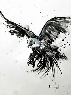 by Sandrot #painter #painting #artist #art Nature Tattoos, Body Art Tattoos, Tattoo Sketches, Tattoo Drawings, Bird Of Prey Tattoo, Rabe Tattoo, Dibujos Pin Up, Tattoo Bauch, Eagle Drawing