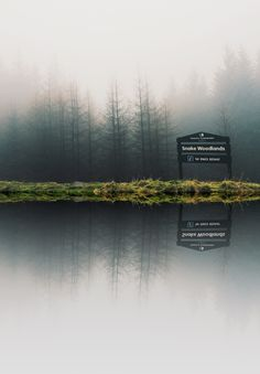 dpcphotography:Snake Woodlands ☁️