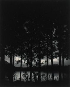 Pentti Sammallahti: Lake Numakawa, Hokkaido, Japan 2005