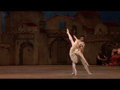 Marianela Nunez & Carlos Acosta - Don Quixote Pas de Deux - YouTube