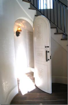 beautiful door/love this idea under stairs.