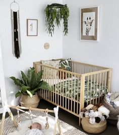 One of the easiest, cheapest and most effective ways to clean the air in your babies nursery is to add plants! Not to mention plants add a lovely touch of nature to your little ones nursery decor. Here are our top recommendations for plants to use in your babies nursery and why. 1. Succulents Photo credit: The Little #bohonursery