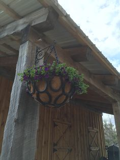 Horse shoe hanging baskets