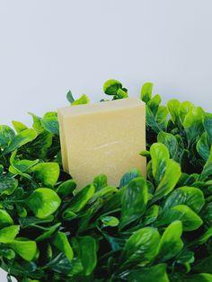 Acne Help, Eczema Psoriasis, Sea Moss, Lighten Skin, Flawless Skin, Avocado Oil, Cleanses, Tea Tree, Vitamin E