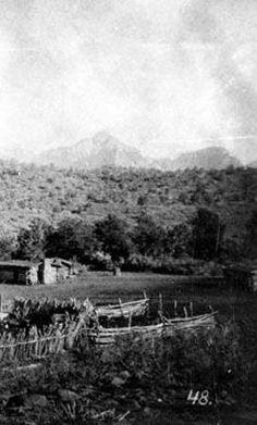 1880 Arizona homestead, upper Oak Creek.  (NAU, Cline Library)