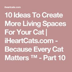 10 Ideas To Create More Living Spaces For Your Cat   iHeartCats.com - Because Every Cat Matters ™ - Part 10