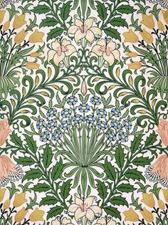19th century botanical drawings - Google Search