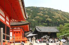 Kyoto : les temples