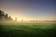 summer morning - mikko lagerstedt