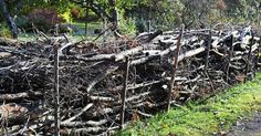 Rakenna risuaita lahottajien avuksi.   Rakentamalla puutarhaasi lahopuuaidan luot keitaan hyödyllisille lahottajille ja helpotat omaa risusavottaasi. Katso ohjeet Viherpihasta.