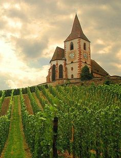 Ride along the Route du Vin d'Alsace, from Strasbourg to Colmar discover enchanting landscapes and picturesque villages