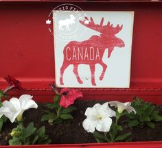 Check out our canada sign selection for the very best in unique or custom, handmade pieces from our shops. Custom Wood Signs, Rustic Signs, Wooden Signs, Wood Kitchen Signs, Canada Day Party, Moose Decor, Coffee Bar Signs, Craft Night, Rustic Feel