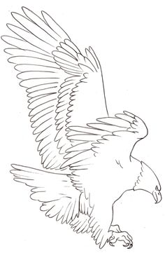 Eagle tattoo stencil - Eagle Free Tattoo Stencil - Free Eagle Tattoo Designs For Men - Free Eagle Tattoo Designs For Woman - Customized Eagle Tattoos - Free Eagle Tattoos - Free Printable Eagle Tattoo Stencils - Free Printable Eagle Tattoo Designs Wood Burning Stencils, Wood Burning Art, Pyrography Patterns, Wood Carving Patterns, Aquarell Phönix Tattoo, Eagle Art, Eagle Outline, Eagle Sketch, Pencil Drawings