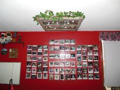 Photos on wall are in CD cases taped to plexiglass sheets.  Easy to change pics