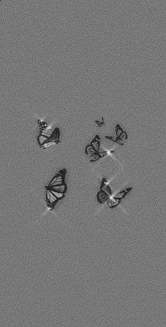 Black And White Picture Wall, Black And White Wallpaper, Black Aesthetic Wallpaper, Iphone Wallpaper Tumblr Aesthetic, Aesthetic Wallpapers, Black White, Butterfly Wallpaper Iphone, Dark Wallpaper Iphone, Cartoon Wallpaper Iphone