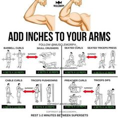 """8,216 Likes, 56 Comments - MuscleMorph® (@musclemorph_) on Instagram: """"ADD INCHES to your arms with this superset workout LIKE/SAVE IT if you found this useful. FOLLOW…"""""""