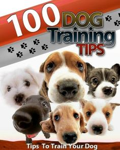 100 Dog Training Tips: Tips To Train Your Dog