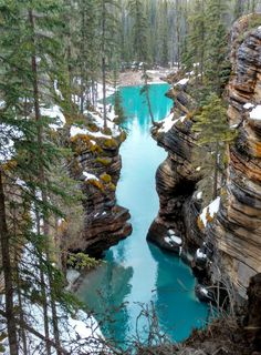 The best family-friendly stops along the Icefields Parkway (from Lake Louise to Jasper)!
