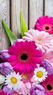 【200位】Flower|おすすめスマホ壁紙