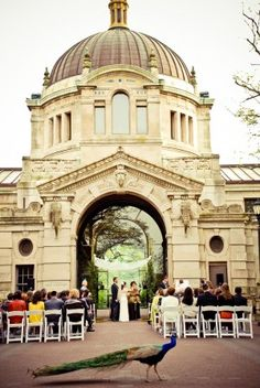 How special is this? Sharing space with the animals on a marvelous wedding day at Bronx Zoo - NY Zoos & Aquarium. The Bronx, New York City.