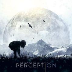 Amazon.com: Perception: Breakdown of Sanity
