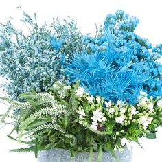 Pool Blue Textured Filler Flower Pack