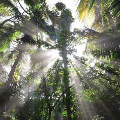 Rincones de Costa Rica #puravida