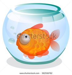 Single #goldfish #swimming in transparent round #glass #bowl #aquarium #cartoon #image print. #Vector design for app user interface.