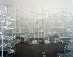 Terrance Koh, Untitled (Vitrines 5 - Secret Secrets)-1