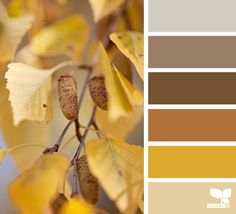 Don't know where I would use these colors, but I really like them!  10 Color Palettes (and HEX Codes) Perfect for the Autumn/Fall Season -- DuoParadigms