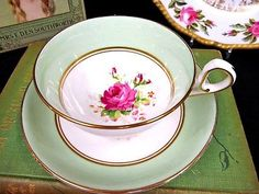 Old Royal Tea Cup And Saucer Pastel Green Painted Rose Pattern Teacup Wetley Ros
