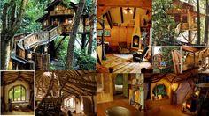 epic tree house