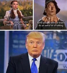A collection of funny Donald Trump pictures, captioned photos, and viral images.: Trump Talking Without Brains