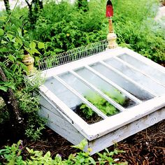 Salvaged windows become a charming cold frame for the garden.