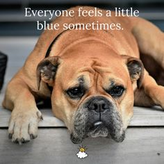 """Everyone feels a little blue sometimes."" Inspiring quotes from LittleThings"