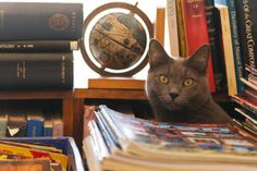 Selected Works Bookstore Cat_10