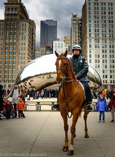 """Mounted """"Bean"""" Patrol, Chicago, Illinois"""