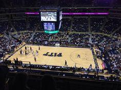 Pitt Panthers Basketball