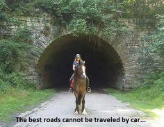 Kohler's Moonlight Carl Be Inspired! Shire Horse, Farms, Moonlight, Horses, Puppies, Inspired, Homesteads, Cubs, Horse