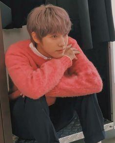 Ten Chittaphon, Huang Renjun, Jung Jaehyun, Na Jaemin, Meme Faces, Winwin, Taeyong, Boyfriend Material, Nct Dream