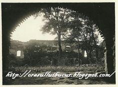 Ruinele Manastirii  Plumbuita