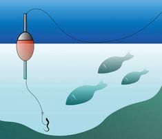 Walleye Fishing Tips, Trout Fishing, Fishing For Beginners, Fishing Tricks, Worm Bait, Fish Chart, Fishing Worms, Red Wigglers, Hunting