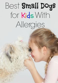 These small dogs for kids with allergies give your mini-me a chance to grow up with a beloved family companion without all the sneezing!